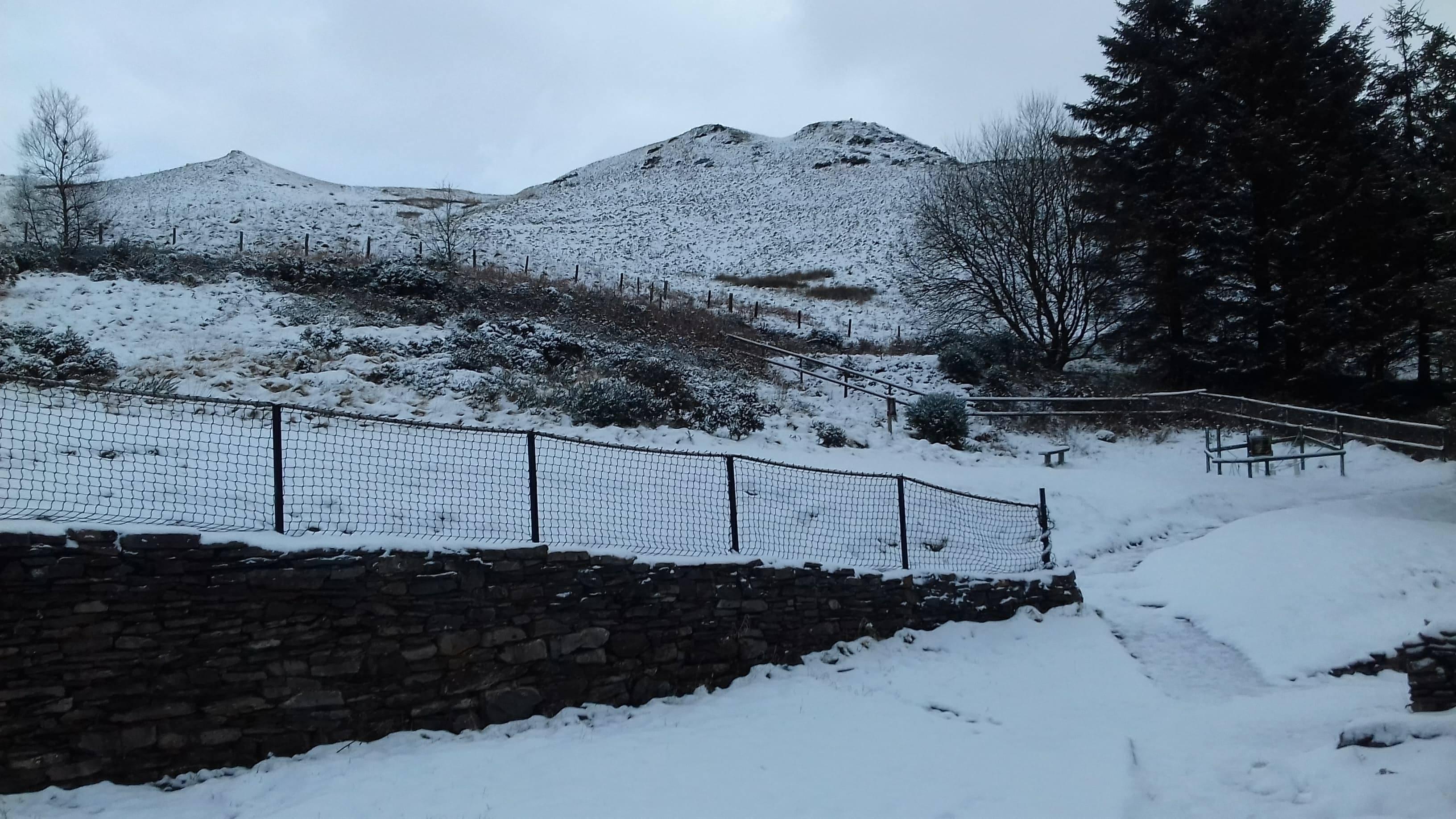 Snow (24)